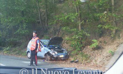 Si ribalta con l'auto e finisce fuori strada, donna portata al San Martino in elicottero