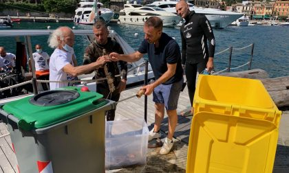 Operazione Fondali Puliti, a Portofino recuperati rifiuti dal mare