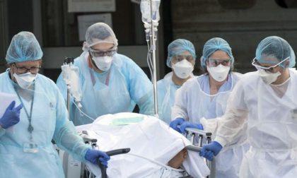 L'ordine degli infermieri a Toti: «Disponga il lockdown e assuma altro personale, non c'è più tempo»