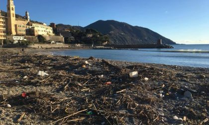 Dopo la mareggiata al via la pulizia dei rifiuti sulla spiaggia