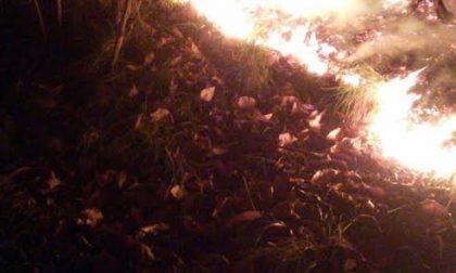 L'incendio doloso sul Monte Carnella: anziano del posto accusato di essere il piromane