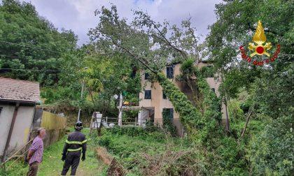 Albero si abbatte su una casa a Moconesi, edificio evacuato