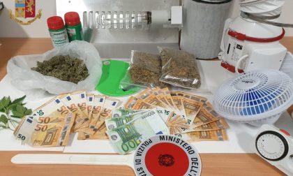 Spacciatore di droga in pieno centro, denunciato