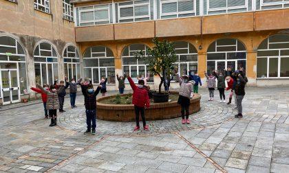 Il comune di Rapallo dona un albero di limone alla scuola primaria Antola