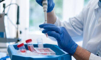 Coronavirus,  136 nuovi positivi in Liguria