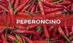 Tutti ortisti: in edicola con Il Nuovo Levante i semi di peperoncino