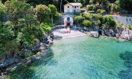 """Supporta il """"Portofino Seaweed Garden"""", a sostegno della biodiversità. E vota!"""