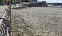 Recco: verso la conclusione i lavori di pulizia delle spiagge libere