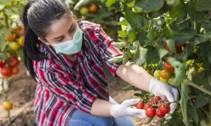 Le donne raccontano l'agricoltura in Liguria