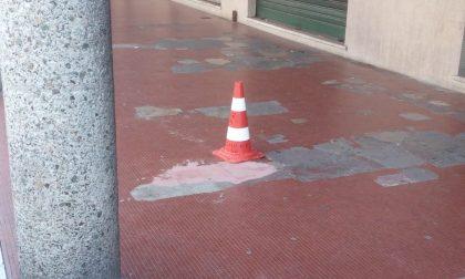 Degrado di Viale Roma, il caso torna in consiglio comunale a Sestri Levante