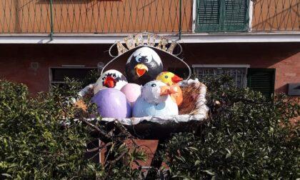 Uova pasquali a Lavagna per portare un po' di allegria