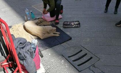 Cani di sabbia: artista di strada cacciato dalle forze dell'ordine