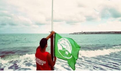 Lavagna di nuovo Bandiera Verde