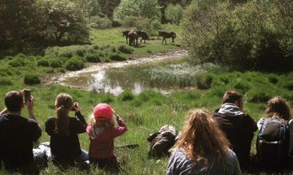 Escursioni in Val d'Aveto, le proposte