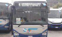 """Amt: """"Autobus in forte ritardo"""""""