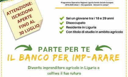 """Villaggio del Ragazzo,""""Il banco per imp-arare"""": al via le iscrizioni per il primo corso di autoimprenditorialità agricola in Liguria"""