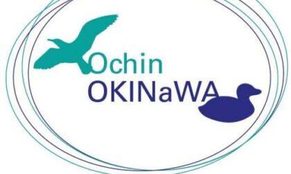 """Ochin Okinawa incontra William Wall: """"Dall'Irlanda a Camogli e ritorno"""""""