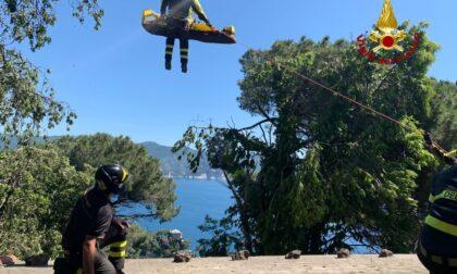 Brividi a Portofino: giardiniere vola da tre metri di altezza