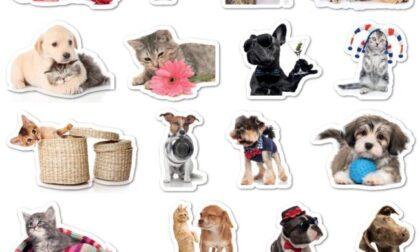 Originali stickers in regalo con Il Nuovo Levante