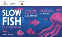 It's Slow Fish time! L'evento torna con un doppio programma digitale e in presenza
