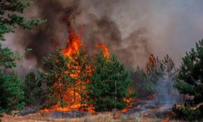 Attivo lo stato di grave pericolosità per gli incendi boschivi in tutta la Liguria