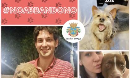 #NoAbbandono, in un video gli animali domestici di cittadini e amministratori