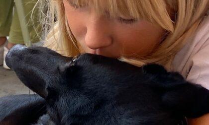 Cani bisognosi, in piazza la raccolta per il canile di Rapallo