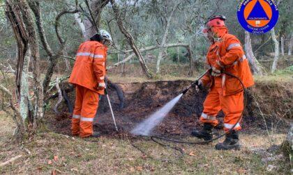 Incendio boschivo a Nozarego, intervengono i Vigili del Fuoco